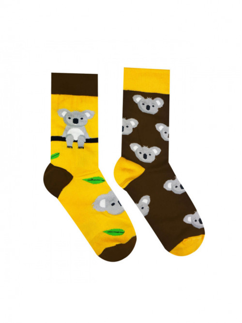 Zoknik Hesty Socks Koala